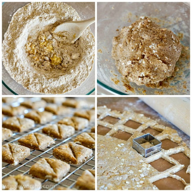 Picture collage of steps taken when making cottage cheese and chicken broth dog treats at home