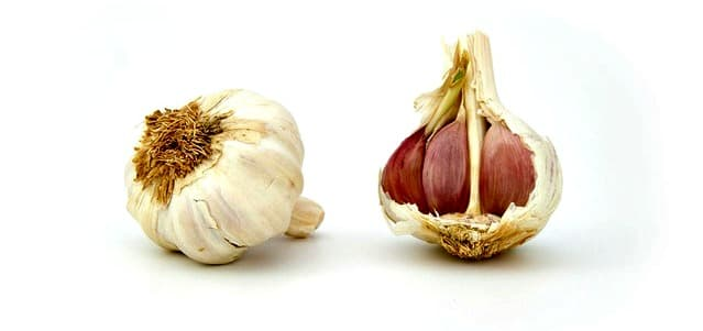 Two garlic bulbs, one showing garlic cloves