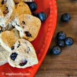 Homemade banana, pumpkin and blueberry dog treats on red plate