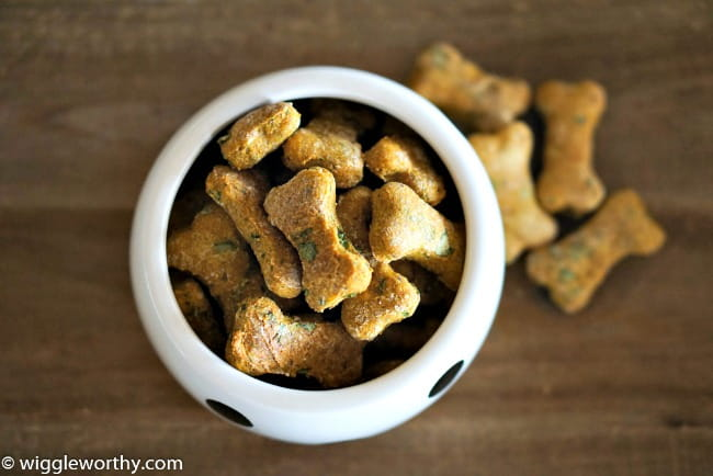 Low calorie pumpkin spinach and parsley dog treats in polka dot bowl