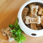 Salmon and parsley dog treats in bowl with sprig of parsley as garnish
