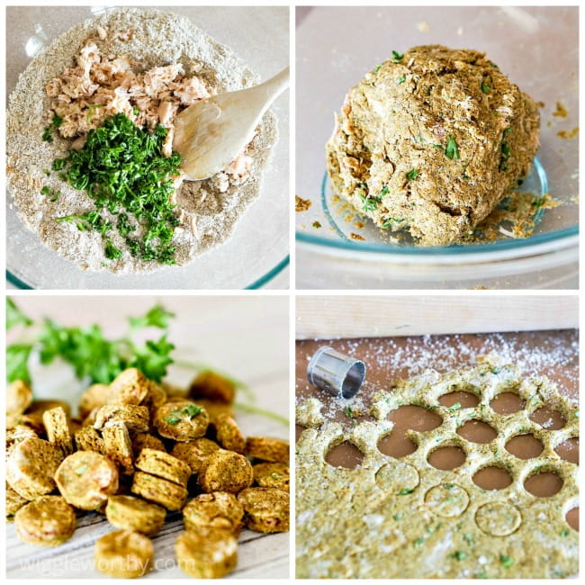 Photo collage of steps taken in homemade tuna and turmeric dog treat recipe