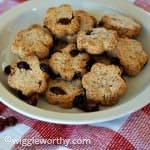 Almond cranberry dog treats on a plate